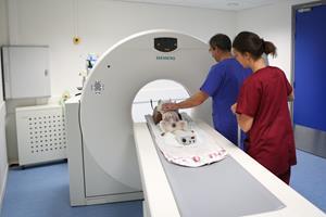 Scanner clinique Evolia